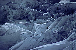 Climbers Reinhold Messner and Peter Habeller negotiate icefall at 1200 metres. Mt. Everest, Himalayas, Nepal  -  Leo & Mandy Dickinson