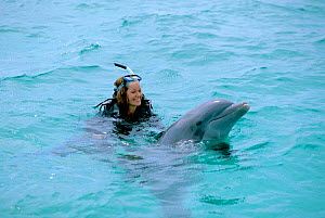 Charlotte Uhlenbroek swimming with Bottlenose dolphin during filming for BBC TV series Talking With Animals, Bahamas, 2002  -  Bernard Walton