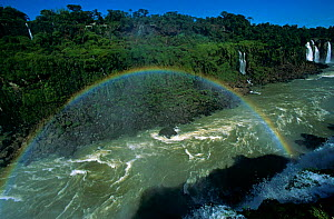 Iguazu Falls with rainbow, from Brazilian side, border of Brazil & Argentina South America - Pete Oxford