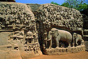 9th century rock carving Mahabalipuram, Tamil Nadu, India  -  Toby Sinclair