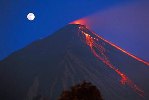 Siau volcano erupting with moon behind, N Sulawesi, Indonesia  -  Jurgen Freund