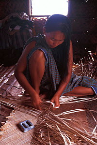 Bajau woman weaving mats, Malaysia. Bajau people live in houses on stilts or are nomadic in houseboats. 2000  -  Jurgen Freund