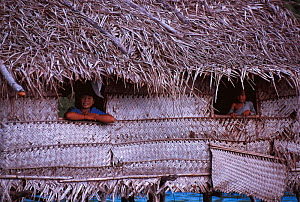 Bajau women look out of stilt house, Malaysia. Bajau people live in houses on stilts or are nomadic in houseboats. 2000  -  Jurgen Freund