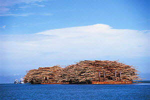 Tropical timber carried by barges at sea. Philippines.  -  Jurgen Freund