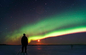 Person watching Aurora borealis colours in night sky, northern Finland, winter - Jorma Luhta