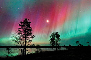 Aurora borealis colours in night sky over lake, northern Finland, October 2002 - Jorma Luhta