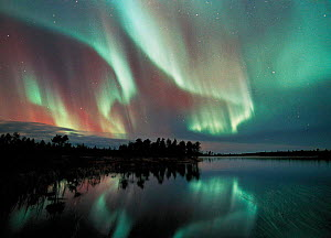 Aurora borealis colours in night sky over lake, northern Finland (nr Arctic circle), October 2002. Auroras also occur in the southern hemisphere where they are know as Aurora australis. - Jorma Luhta