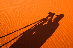 Shadow of photographer and camera on sand dune, Namib Desert, Namibia  -  TJ Rich