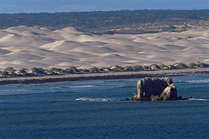 Scenic view of sand dunes from the Head of the Bight, Yalata, The Nullabor, South Australia - Steven David Miller