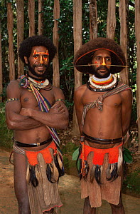 Huli wigmen in traditional clothing, Papua New Guinea, 1991  -  NEIL NIGHTINGALE