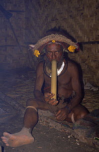 Huli wigman smoking pipe inside hut, in traditional clothing, Papua New Guinea 1991  -  NEIL NIGHTINGALE
