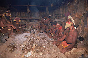 Huli wigman in hut around fire, in traditional clothing, Papua New Guinea 1991  -  NEIL NIGHTINGALE