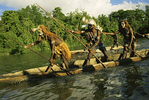 Asmat war canoe with tribal people on river, Irian Jaya / West Papua, New Guinea 1991 (West Papua).  -  NEIL NIGHTINGALE