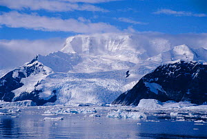 Mountain and glacier with ice floes, Antarctic Peninsula summer, Antarctica  -  Martha Holmes