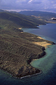 Aerial view of ragged desolate coastline of Djibouti, at entrance to Red Sea, East Africa  -  Marguerite Smits Van Oyen