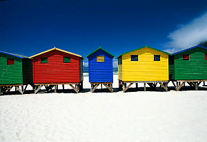 Colourful beach bathing huts at Muizenburg, False Bay, Cape Town, South Africa  -  Gavin Hellier