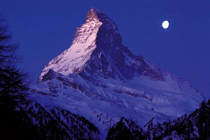 N-21808 Matterhorn mountain at dawn with moon, The Alps,  Switzerland.  -  Aflo