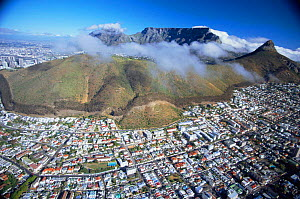 Aerial view of Table mountain, Lions Head and Sea Point, Cape Town, South Africa  -  TOM WALMSLEY