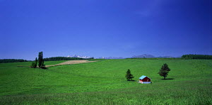 N-20805 Open landscape with grass meadow, farm building and mountains in distance, Hokkaido, Japan.  -  Aflo