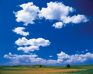 Y-5407 White clouds in blue sky above farmland, Europe.  -  Aflo