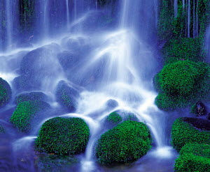 N-14708 Waterfall falling onto mossy stones, Nagano, Japan.  -  Aflo
