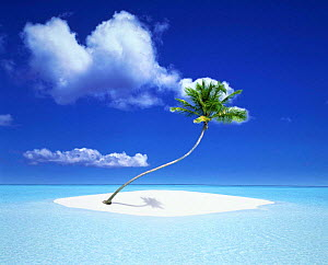 N-7001 Tiny tropical sand island with palm tree surrounded by sea. Composite image -  -  Aflo