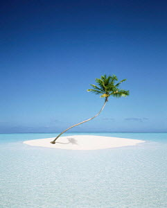 N-7105 Tiny tropical island with single palm tree surrounded by sea. Composite image -  -  Aflo