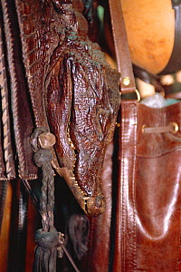 Crocodile head on bag for sale in duty free shop, Lagos airport, Nigeria, West Africa. 2002 - Fabio Liverani