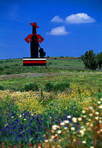 Tio Pepe - Sherry Billboard in field of wild flowers Andalucia, Spain, Europe  -  Gavin Hellier