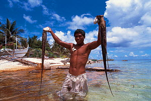 Octopus hunter with catch, Arenas Reef, Sulu Sea, Philippines  -  Jurgen Freund