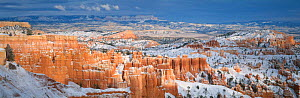 Panoramic view of hoodoos in Bryce Amphitheatre in winter, Bryce Canyon NP, Utah, USA  -  Gavin Hellier