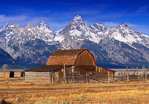 Old farm barn, The Teton Range, Grand Teton NP, Wyoming, USA - Gavin Hellier