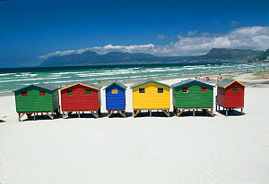 Colourful Beach Bathing Huts, False Bay, Muizenburg, Cape Town, South Africa  -  Gavin Hellier