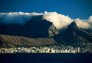 Table Mountain and the City from the Bay, Cape Town, South Africa  -  Gavin Hellier