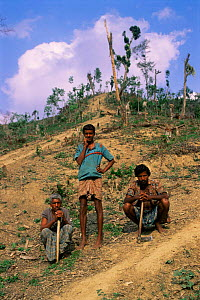 Local people and deforestation of semi-evergreen rainforest, Sylhet district, Bangladesh  -  Ian Lockwood