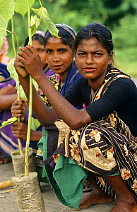 Women in the afforestation project with rubber saplings, Madhupur district, Bangladesh - Ian Lockwood