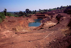 Manganese mining in previous evergreen forest, Dandeli sanctuary, Karnataka, Southern India  -  Vivek Menon