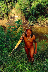 Yaminahua Indian man with bow and arrow. Boca Mishagua River, Amazon rainforest, Peru. South America. People contacted in 1988  -  Pete Oxford