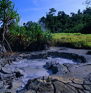 Boiling mud and thermal springs, West New Britain, Papua New Guinea  -  Michael Pitts