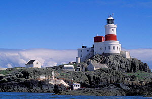 Lighthouse, Skerries Is, Co. Dublin, Eire. Important breeding site of Arctic Terns  -  Pete Oxford