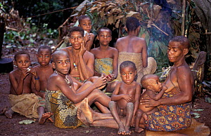 Bayaka / Babenzele pygmies in hunting camp. Central African Republic  -  Andrew Murray