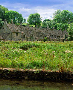 Medieval cottages +meadow, Arlington Row, Bibury, Cotswolds, Glos, UK 2003  -  Nick Turner