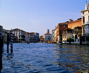 Looking north along the Grand canal, Venice, Italy  -  Frank Tomlinson
