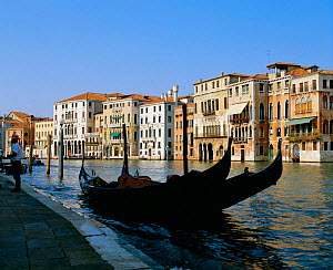 The Grand canal with gondolas in foreground, Venice, Italy  -  Frank Tomlinson