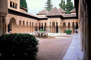 Courtyard in The Palace of the Lions, The Alhambra, Granada, Spain  -  Frank Tomlinson
