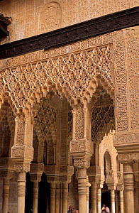 Stone carvings, The Palace of the Lions, The Alhambra, Granada, Spain  -  Frank Tomlinson