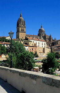 View from the roman bridge towards the New Cathedral, Salamanca, Spain  -  Frank Tomlinson