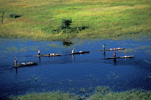 Local people moving on mokoros, traditional boats of the Okavango delta. Botswana.  -  Christophe Courteau