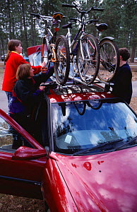 Bicycles on roof of car, Moors Valley Country Park, Dorset, England  -  Julia Bayne