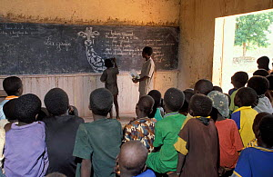 Conservation & natural history lesson in classroom. Kanare Village, Sahel, Niger, Africa.  -  Christophe Courteau